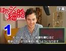 医者が見る はたらく細胞 1話 (素晴らしいですね) 外国人の反応【日本語字幕】 (10月08日 10:30 / 37 users)