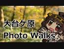 第51位:大台ケ原PhotoWalksツーリング【Odaigahara】 thumbnail