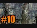 【10】バイオ5実況 -戦わなくていいからクランク回して-