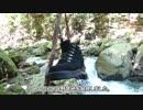 第11位:【ソロキャンプ】窮地!酒の救世主現る! thumbnail
