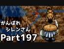 【実況】TMTAをがんばれシレンさん【風来のシレン】Part197