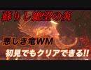 【DDON】WM蘇りし絶望の炎!初見でもクリアできる!悪しき竜!ドラゴンズドグマオンライン