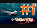 第88位:【釣り】トラウツボって食べれるんですか #1【料理】 thumbnail