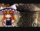 【ゆっくり実況】15話:古代竜人族を探せ【MHW】
