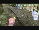 琴葉姉妹のバイクでおでかけVol.4_前編 『奥秩父 森林軌道探訪!』【ツーリング編】