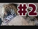 第75位:【釣り】トラウツボって食べれるんですか #2【料理】