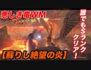 【DDON】絶望より蘇りし炎!WM攻略☆簡単にSランク!!ドラゴンズドグマオンライン