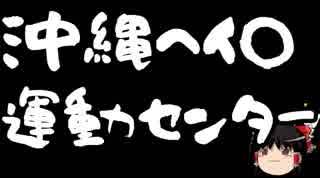 【ゆっくり保守】沖縄ヘイト運動センターの間違いなんじゃないのか?