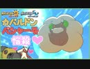 【ポケモンUSUM】エルフーンの等身大ぬいぐるみが欲しい委員会 02【シングルレート】