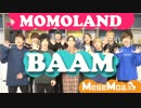 男9人でMOMOLAND - BAAM Covered by only men