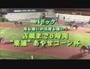 2018年10月19日川崎競馬8R 第33回津久井やまびこ祭り成功祈念記念(B2・B3) 表彰式
