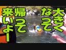 第19位:【旅動画】ぼくらは新世界で旅をする Part:4【四国バーガー編】 thumbnail