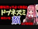 琴葉姉妹のスマホゲーム開拓日誌【一風変わったRPG】