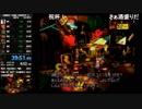 【TS録画】スーパードンキーコング2 RTA any% 39:51
