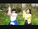 【あかりん×ひふみ】リバースユニバース 踊ってみた【初コラボ】