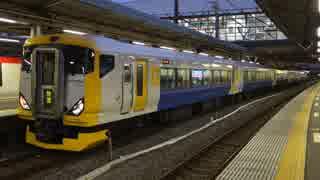 【臨時快速あり】大船駅(JR横須賀線)を発着する列車を撮ってみた