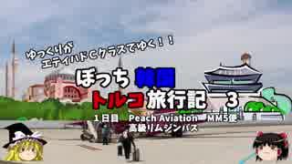 【ゆっくり】韓国トルコ旅行記 3 まずは韓国到着!