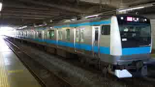 大船駅(JR根岸線)を発着する列車を撮ってみた