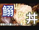 鰯山かけ丼(゚∀゚)【初老の大食いシリーズ】