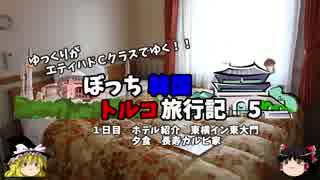 【ゆっくり】韓国トルコ旅行記 5 ホテル紹介 韓国料理焼肉