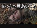 【ゆっくり実況】ありきたりな中世生活サバイバル Part25【Life is Feudal】