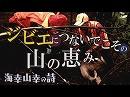 【海幸山幸の詩 #33】ジビエにつないでこその山の恵み[桜H30/11/7]
