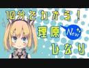 【新生】10分でわかる理原ひなり【ニャキ子セレクトゲーム実況まとめ】※転載