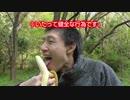 【キクぴぃ】スプライトとバナナを持ってピクニックしてきた【バナナスプライト】#8