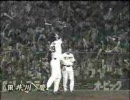 HANSHIN Tigers PV -Happiness-