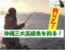 """【沖縄の声】""""PDCA""""サイクルの重要性について/釣り乙!これって釣りでしょ? In 南城市 佐敷 仲伊保港[桜H30/11/8]"""