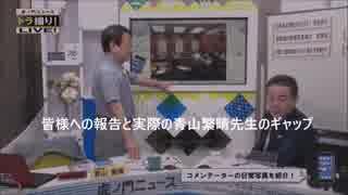 青山繁晴先生の国会活動報告(勇ましい報告内容と実際のギャップを楽しむ動画です)