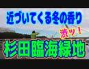 釣り動画ロマンを求めて 205釣目(杉田臨海緑地)
