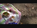 ビーフシチュー弁当 後半