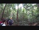 2018 タイ・マレーシア 旅行記 #16