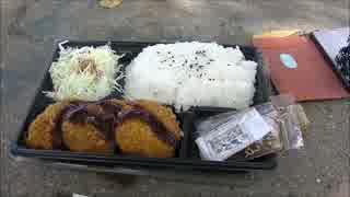 奈良の大仏見に行く。