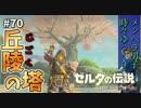 【実況】ゼルダ童貞による ゼルダの伝説BotW(ブレスオブザワイルド)~丘陵の塔マジ地獄~Part70