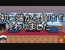 ゆっくり達の特撮解説「仮面ライダー黒影 後編」