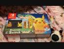 わかります、あなたはペンペン氏、Nintendo Switchを買いに行く。➂です☆