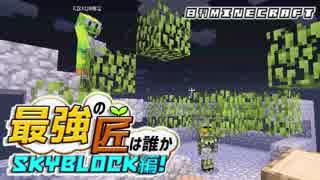 【日刊Minecraft】最強の匠は誰かスカイブロック編!絶望的センス4人衆がカオス実況!♯2【Skyblock3】