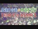 【ASMR】虫達の合奏の中、林道を歩く【夏の終わりの夜】