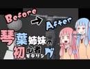 琴葉姉妹の初心者モデリング:中編