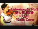 愛の夢 第3番/リスト: Liebestraume No.3/F.Liszt 【バイオリン 】【Violinist YURIKO】