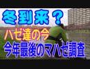 釣り動画ロマンを求めて 番外編(今、ハゼ達は?今年最後のマハゼ調査)