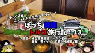 【ゆっくり】韓国トルコ旅行記 13 絶品 竹筒入り緑茶ご飯を食す