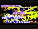 【ニコカラ】劣等上等【off vocal】+2