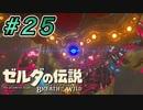 【ゼルダ実況】やっと始まった冒険    #25 【ゼルダの伝説ブレスオブザワイルド】
