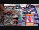 【闇のゲーム】青森決闘ツガルレインボー FAE 46