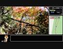 第34位:【ゆっくり】ポケモンGO 二ツ箭山攻略RTA thumbnail