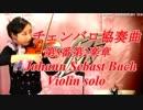 チェンバロ協奏曲第5番第2楽章 /J. Sバッハ【バイオリン 】【Violinist YURIKO】