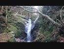 【滝】①出会いの滝 徳島